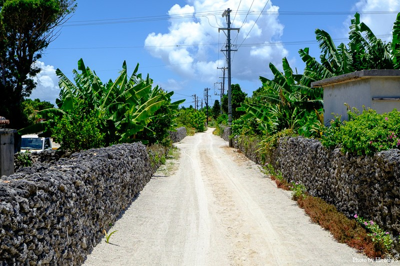 竹富島 集落の道 舗装ではなく、海砂を蒔いている