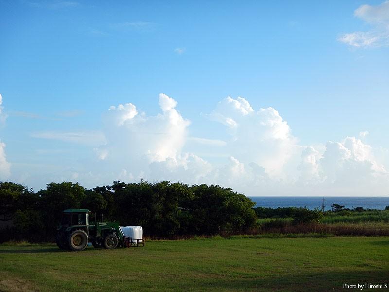 西表島 ラティーダ西表より県道に向かう途中の風景