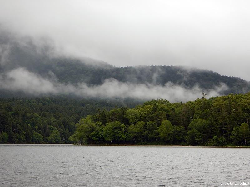 雨が降ったり止んだりの阿寒湖であった。気温は20度を切っており、濡れると身体が冷えてくるほどだ。