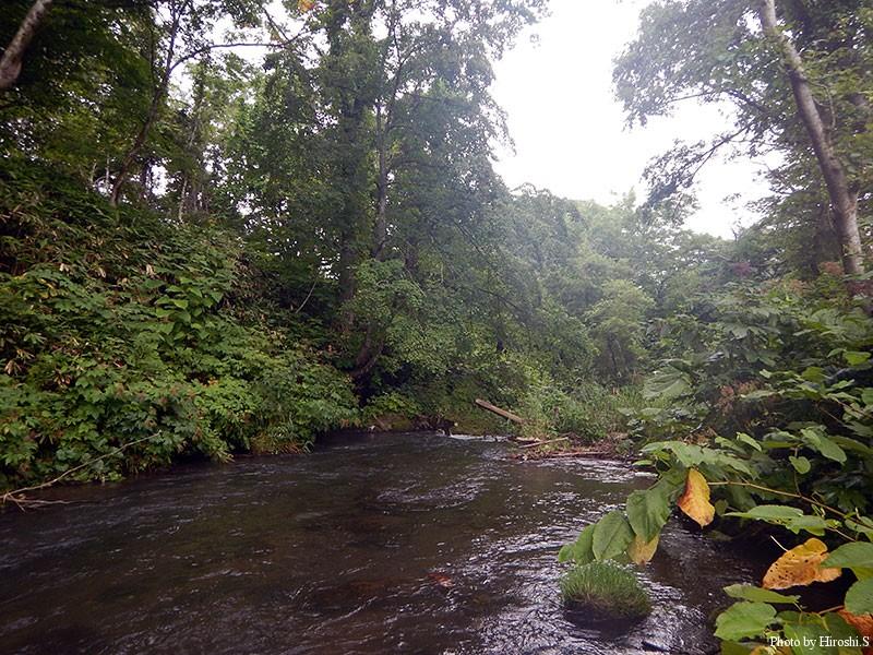 ポイントは多いが、道央圏の川はなかなか反応してくれない。