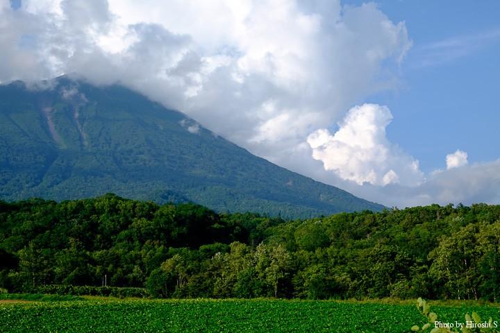 帰路、羊蹄山の奥に、雨雲がみえていた。