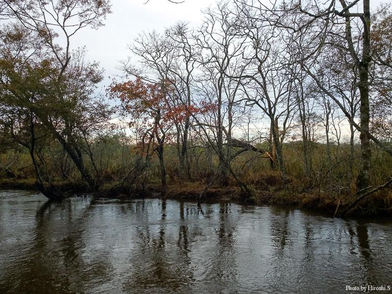 別寒辺牛川の流れ